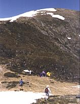Mt Bogong - above the snow-line